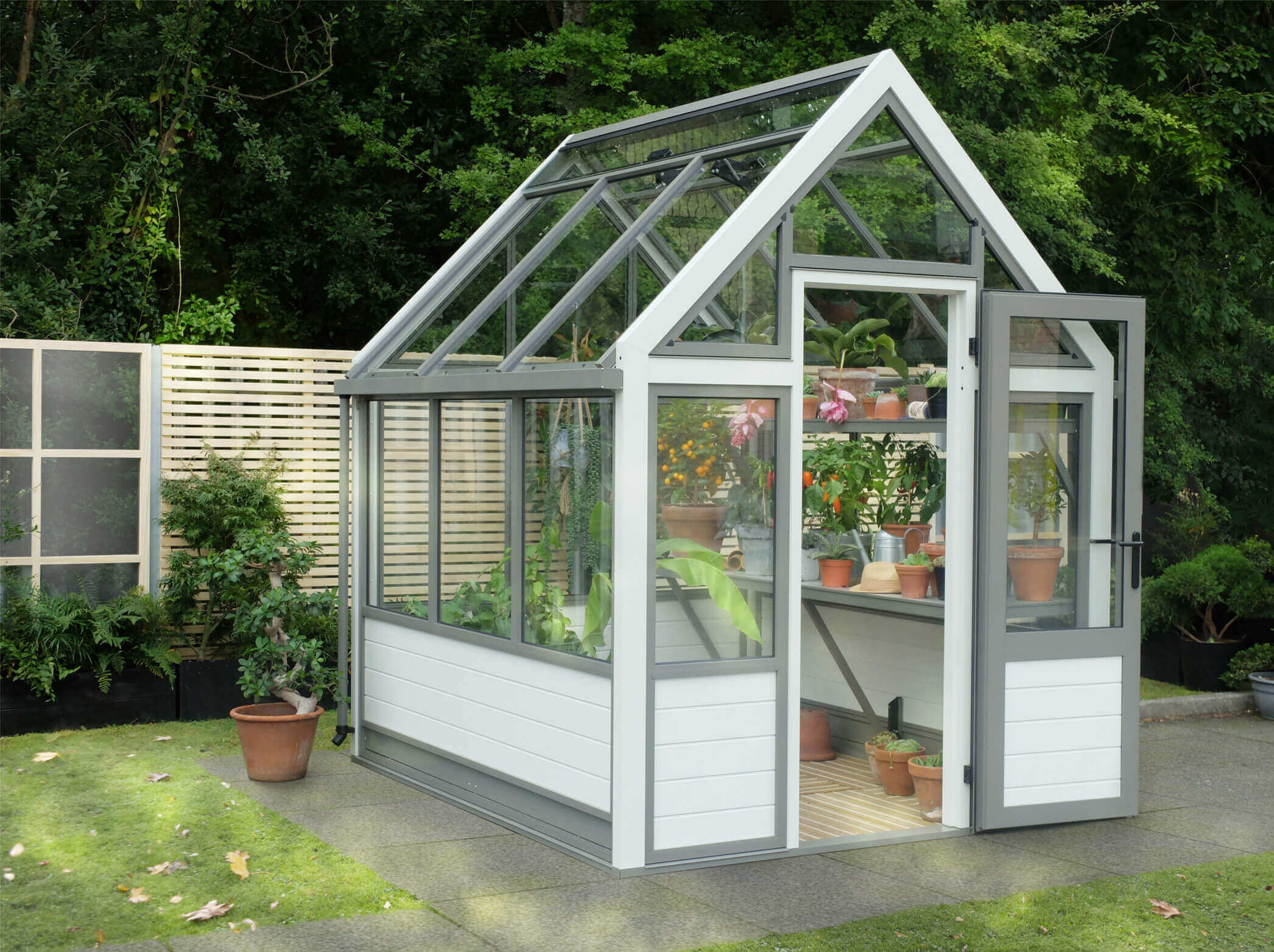 Small modern aluminium greenhouse