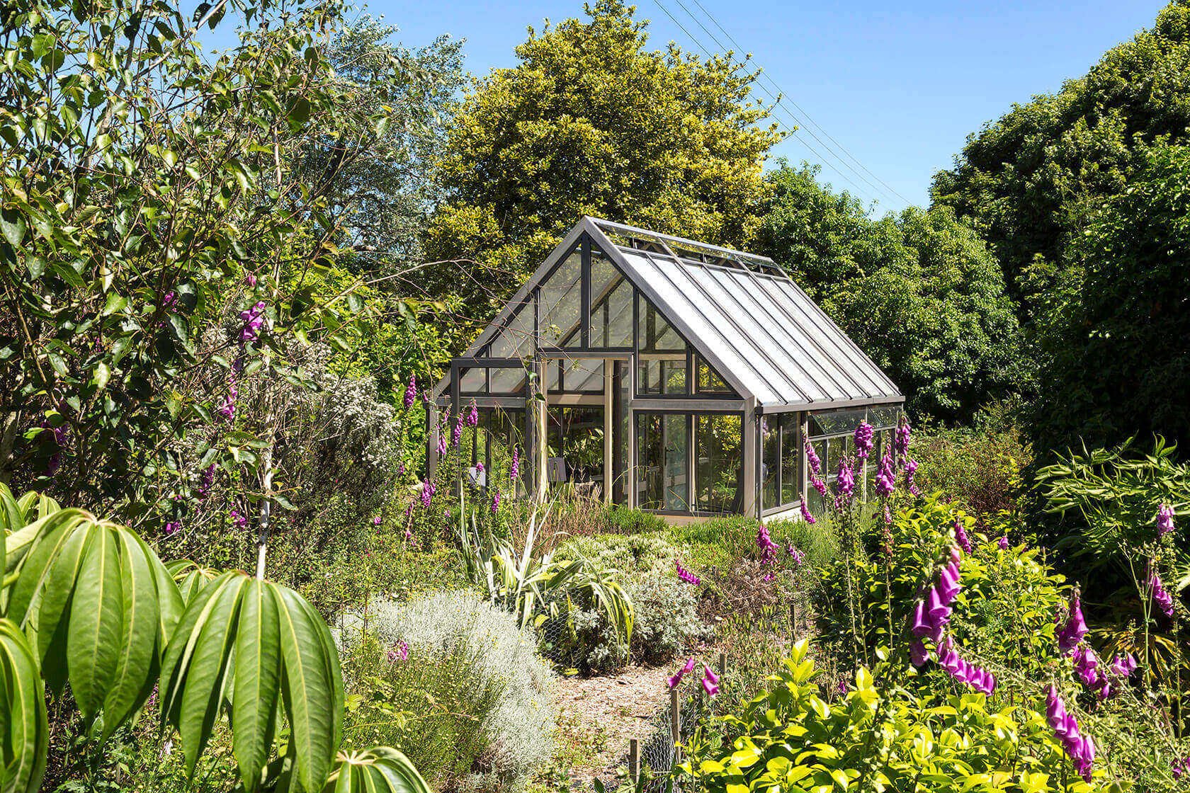 A Greenhouse for The Plant Enthusiast