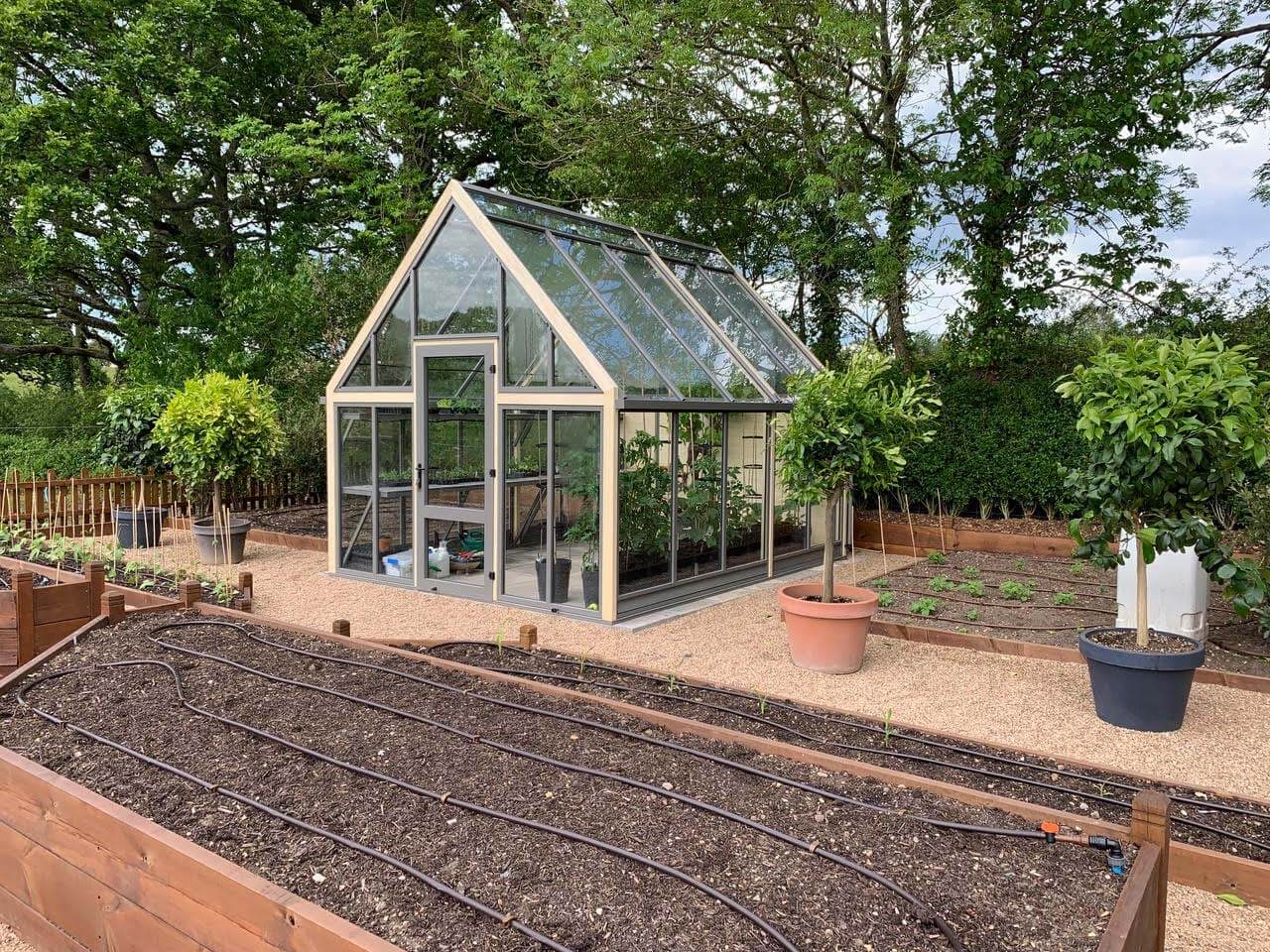 Greenhouse amongst raised beds
