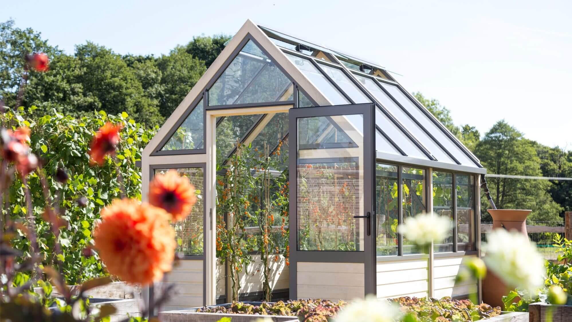 8 x 10 greenhouse