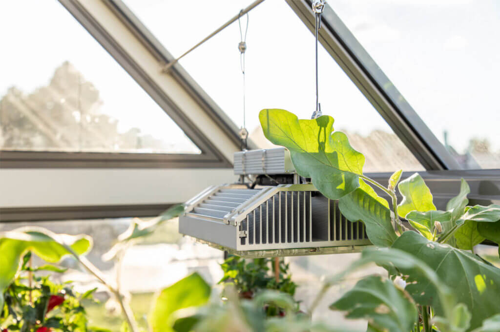 greenhouse grow light