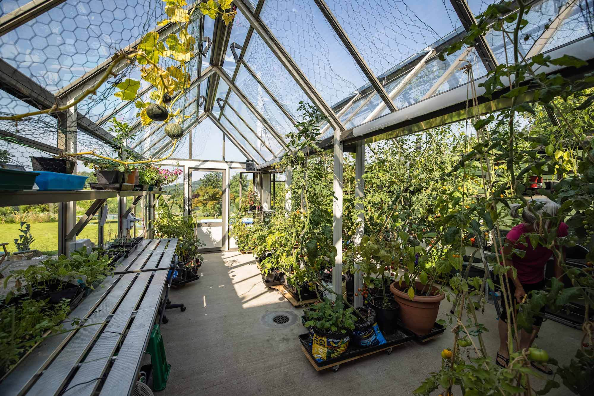 Cultivar Bespoke Greenhouse