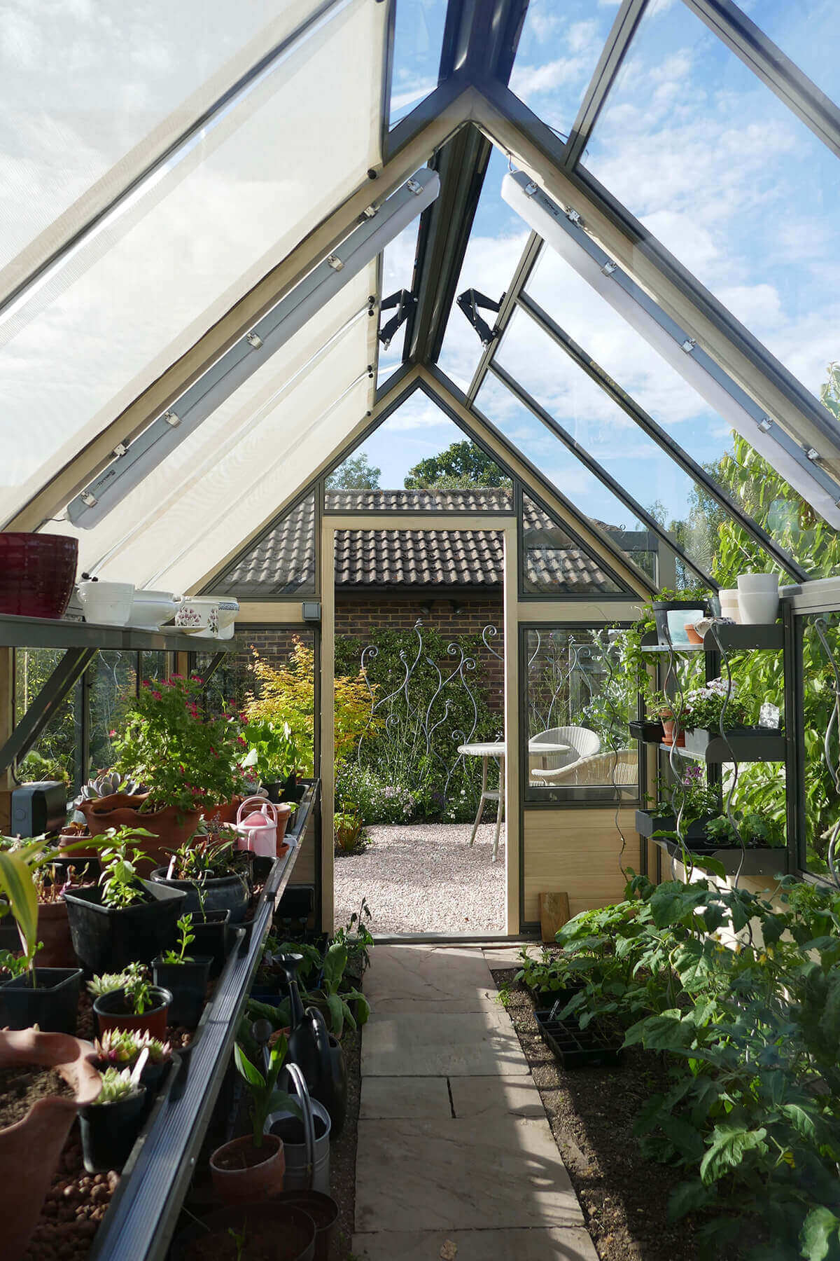 Internal view on large greenhouse