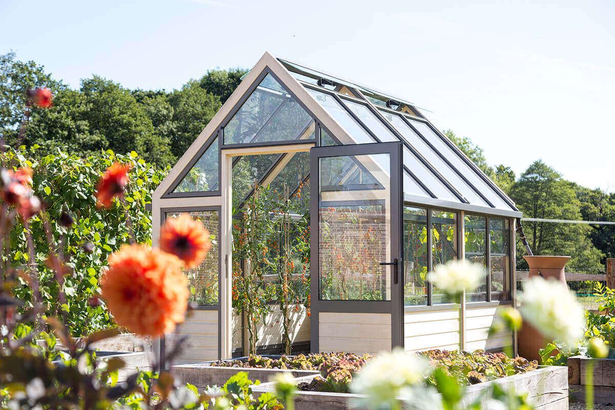 Modern accoya greenhouse in kitchen garden
