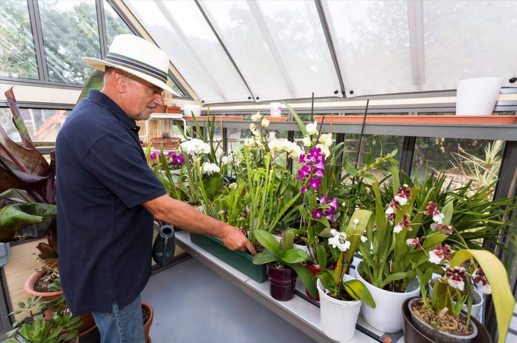 greenhouse in use