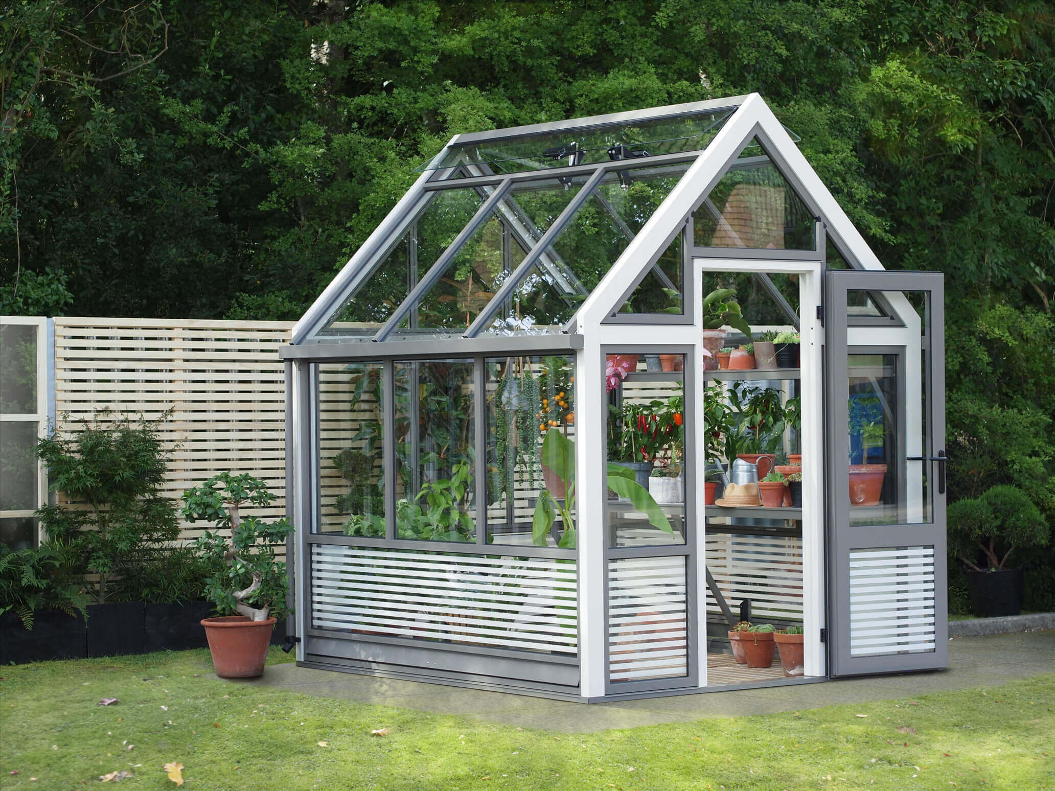 Small Contemporary Aluminium Greenhouse