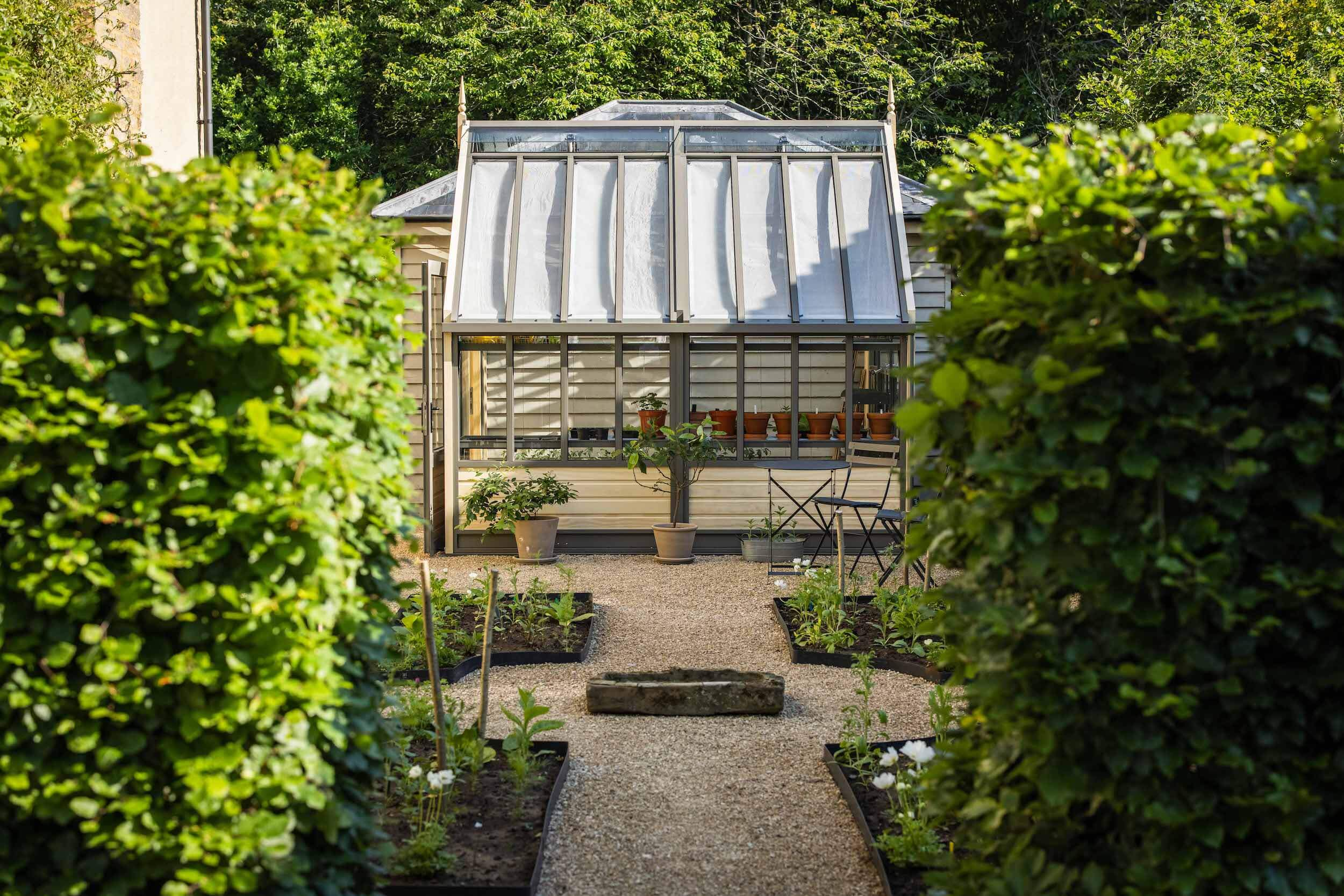 View of greenhouse through hedge