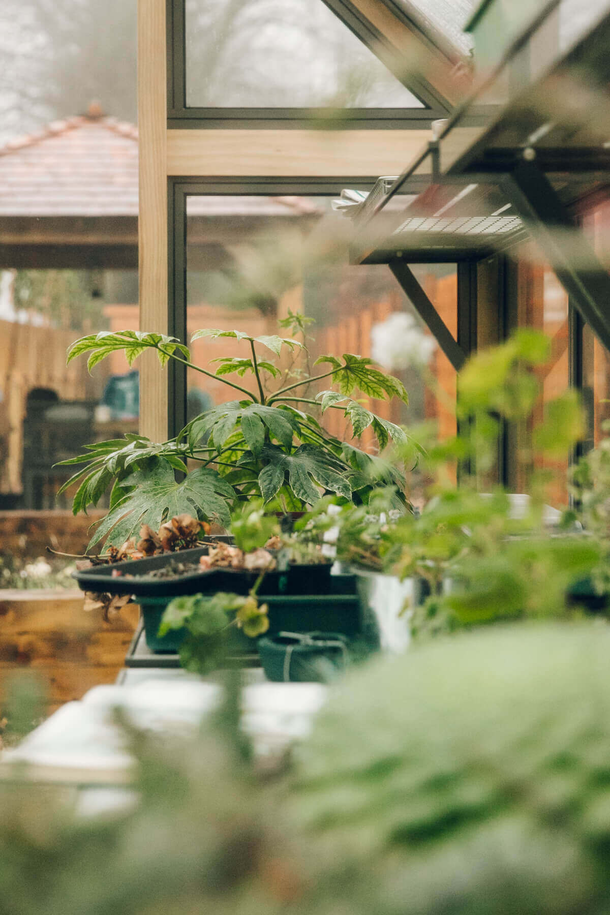 Retreat to the Greenhouse