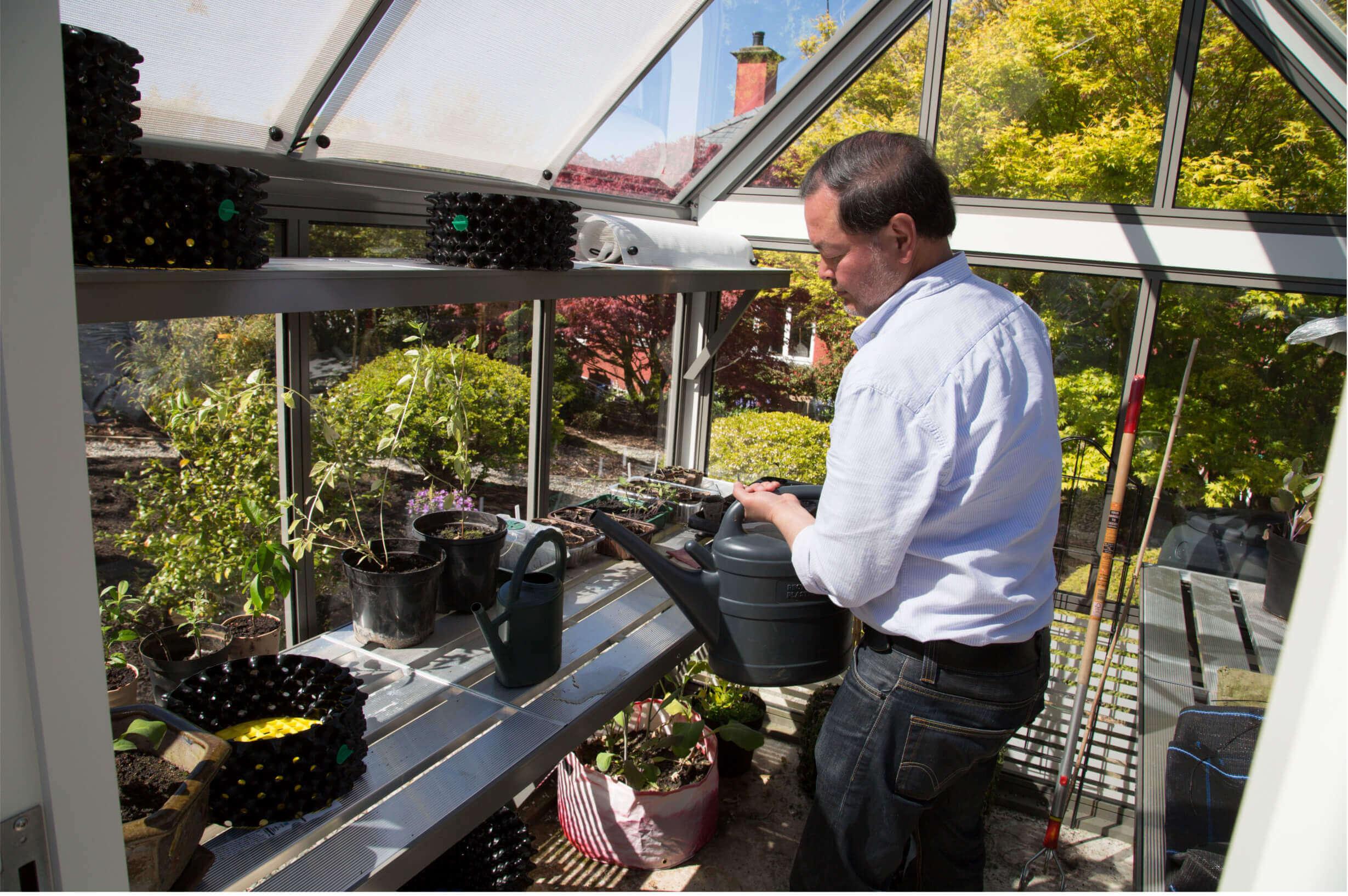 Watering a small aluminium greenhouse